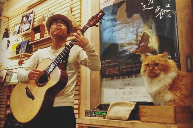アコースティックギタリストぷう吉さんへインタビュー!!